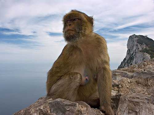 Ten facts you need to know about Gibraltar