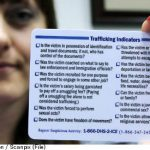 Arrests made in Spain after trafficking bust