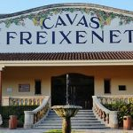Catalonia's cava makers flat on independence
