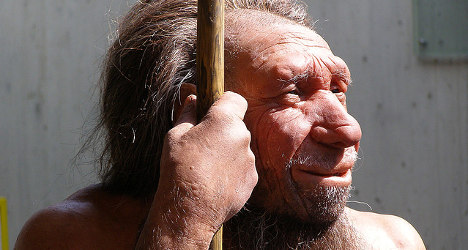 Spain's Neanderthal cannibals ate 12 raw