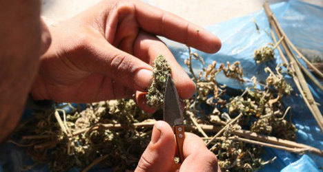 Weed dealing officials kicked out of ruling party