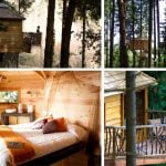 CABANES ALS ARBES, Sant Hilari Sacalm, Catalonia (€€): This cool hotel about 100km (60 miles) from Barcelona has ten tree house cabins — perfect for nature lovers who want to get away from it all.Photo: www.cabanesalsarbres.com