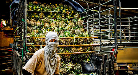 Cocaine-filled pineapples seized by Spain