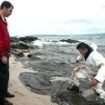 2002:Felipe visits Galicia's coasts following the Prestige oil spill disaster.Photo: Miguel Riopa/AFP
