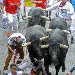 A participant falls in front of Miura bulls as a friend tries to help him out.Photo: Rafa Rivas/AFP