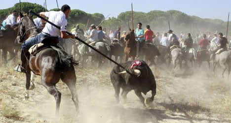 Protesters stoned at Spain's 'cruelest' festival