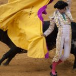 Ex-bullfighter threatens lawyer with hoe