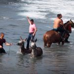 Horse riders gather on Enramada beach along the southern Adeje coastline on the Canary island of Tenerife, on January 20th, to celebrate the festival of Saint Sebastian, patron protector of animals against pests and disease.Photo: Desiree Martin/AFP
