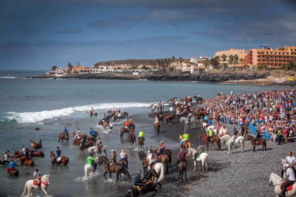 In pics: Tenerife's blessing of the horses