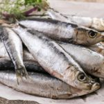 Top chefs tout anchovies in bid to save the oceans