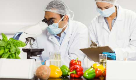 From farm to plate – how safe is your food?