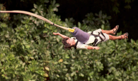 Bungee girl jumped on the 'no jump' command