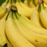 Spain finds 300 kilos of cocaine in banana shipment from Costa Rica