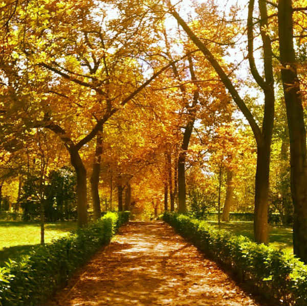 Your stunning autumn photographs from across Spain