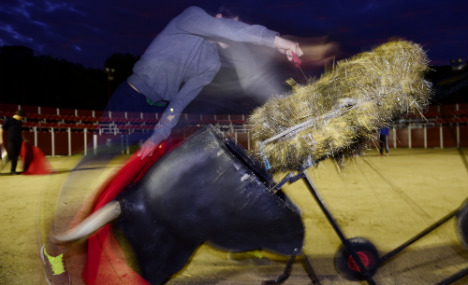Bullfighters battle to stay in ring as animal rights movement grows