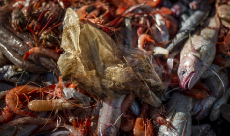 Spain's fishermen have a new catch of the day with fashion for plastic