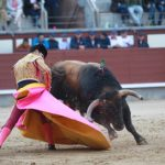 Spain could lose €3.6 billion a year if it bans bullfighting