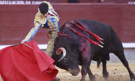 Tensions are mounting over bullfighting tradition in Spain