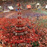 Teams can include up to 500 member who work together in a tightly organised system.Photo: Lluis Gene / AFP