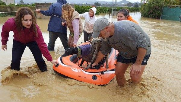 Two drown in flash floods as torrential rain hits southern Spain