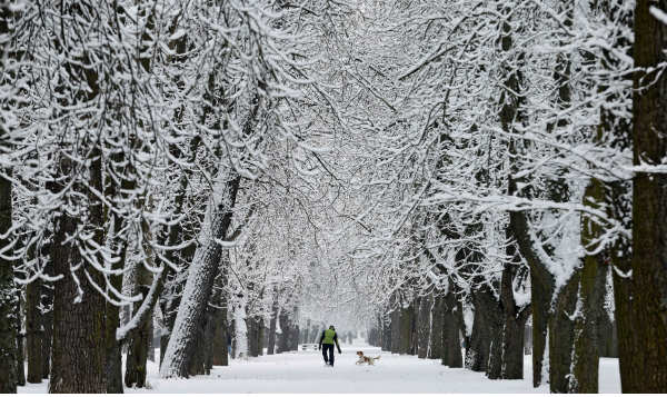 Spain prepares for the BIG FREEZE as Siberian winter approaches