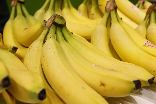 Two arrested in Spain for smuggling cocaine in fake bananas