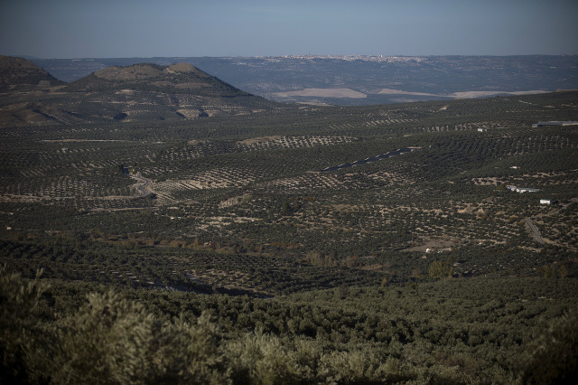 As Spain battles extreme drought, experts warn climate change means it's here to stay