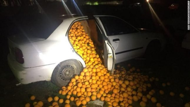 Orange thieves caught red handed with car full of stolen fruit