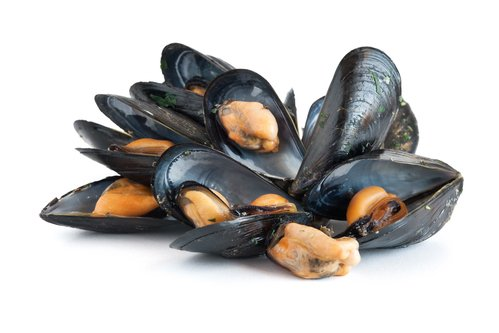 Dodgy mussels blamed for norovirus outbreak in Spain
