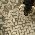 Man gored to death by bull during fiesta in southern Spain