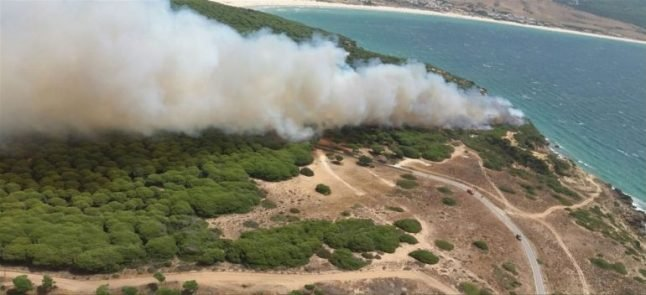 Firefighters bring wildfire near natural park near Tarifa under control