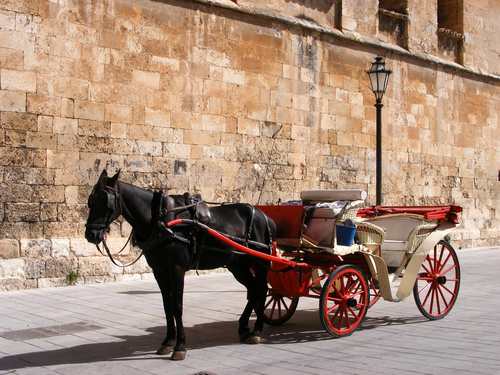 OPINION: It's time to take horse-drawn carriages off the streets of Mallorca
