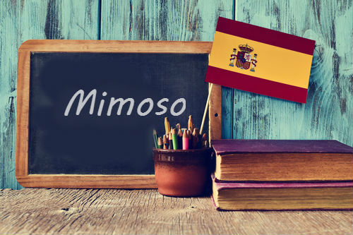 Spanish Word of the Day: 'Mimoso'