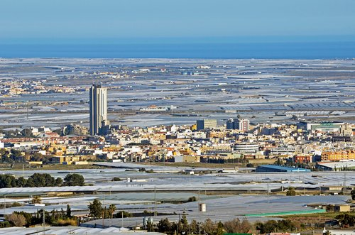Four reasons El Ejido has become Spain's most far-right town