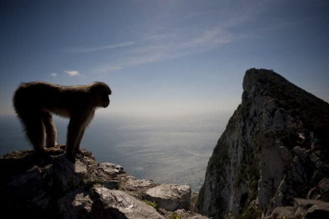 Gibraltar rejects joint sovereignty talk 'as dead as a dodo'