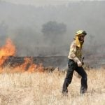 Self-combusting manure at Spanish chicken farm blamed for devastating wildfire