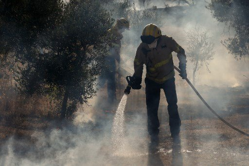 IN PICS: Wildfires devastate 10,000 hectares of forest across Spain in heatwave