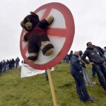 'No to bears': Farmers in Spain's Pyrenees protest against predators re-introduction