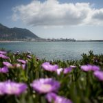 Gibraltar to hold general election on eve of Brexit