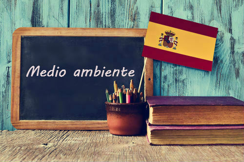 Spanish word of the day: 'Medio ambiente'