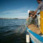 Mar Menor: How nutrients have poisoned Spain's largest saltwater lagoon
