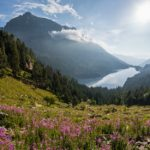 GALLERY: Discover Spain's breathtaking national parks from your armchair