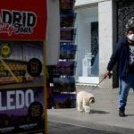 How dogs have become hot property during Spain's coronavirus lockdown
