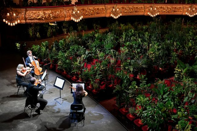 As lockdown lifts, Barcelona's plants enjoy a day at the opera