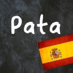 Spanish Word of The Day: 'Pata'