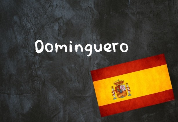 What in Spain are 'domingueros'?