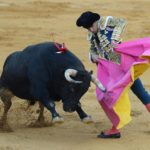 Spanish crowds to return to the bullring next month in support of Covid-hit matadors