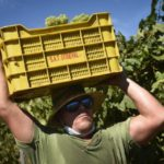 Spain to fine companies that expose workers to heatstroke up to €820K