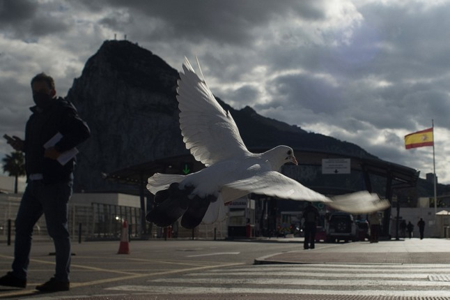 A dove flies past the Rock of Gibraltar near the border crossing between Spain and Gibraltar.
